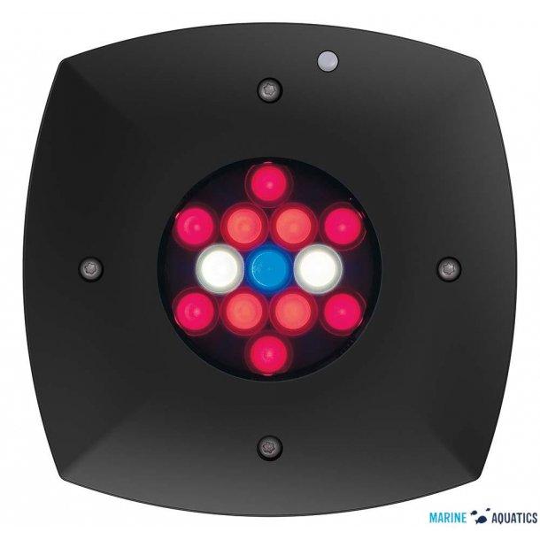AI Prime Fuge - Refugium 13-LED lighting (~46W)