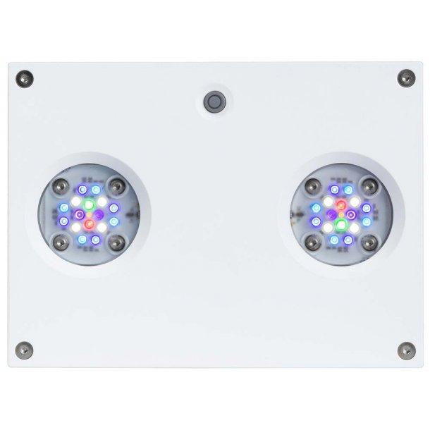 AI Hydra 32HD - 32-LED aquarium lighting, Hvid (~90W)