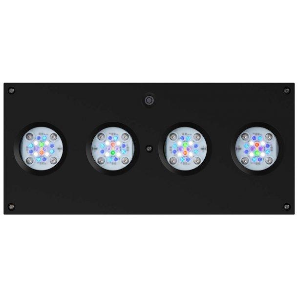 AI Hydra 64 HD - 64-LED Sort