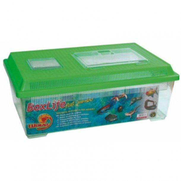 Boxlife Flat Jumbo 45X30X17,5