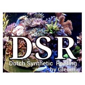 DSR Reefing
